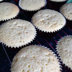 strawberry_chessecake_cupcakes_2